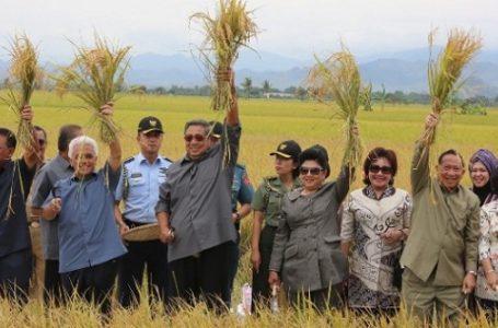 SBY Panen Raya di Kab. Sidrap