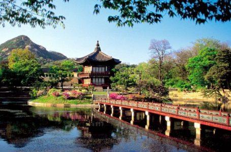 Pengelolaan Hutan di Korea Selatan Patut Ditiru