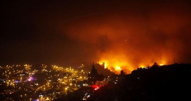 Seluas 9 Ha Hutan di Jepang Terbakar