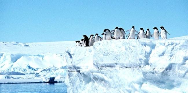 400 Milliar Ton Gas Metana di kutub Utara dan Selatan Terancam Mencair