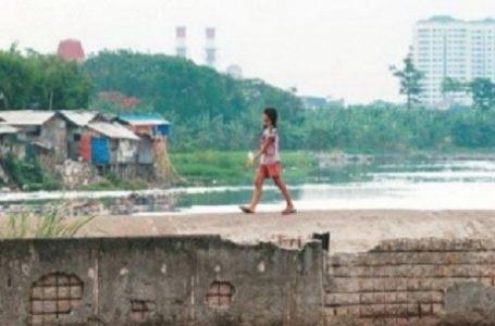 Hindari Perkelahian Antar Kampung, Pemprov DKI Jakarta Beli Tanah Untuk Dibuat Taman