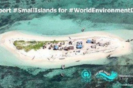 "Tuntut Presiden, Petisi Khusus ""Tolak Reklamasi Teluk Benoa"" Dilayangkan"