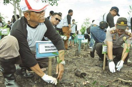Ratusan Masyarakat Bontang Ramai-ramai Tanam Mangrove