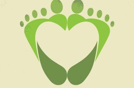 Tuan Rumah Hari Lingkungan Hidup Tahun Ini di Barbados