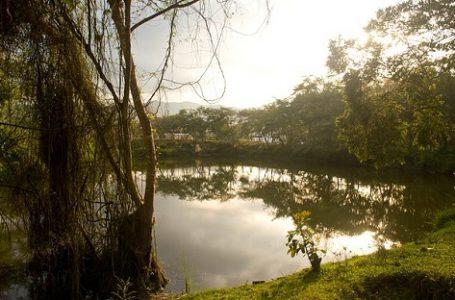 Restorasi Ekologi Kolombia Jadi Tren Dalam Pembangunan di Amerika Latin