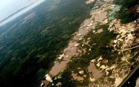 Indonesia Dituding Sebagai Perusak Hutan