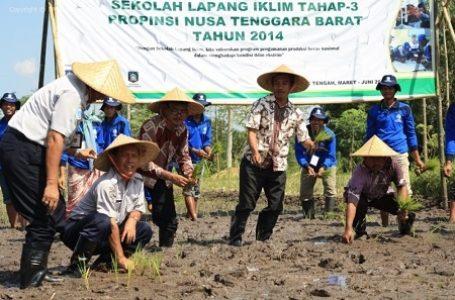 BMKG Buat Terobosan dengan Membuat Sekolah Lapang Iklim Untuk Petani