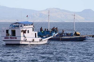 Harapan Nelayan Sulawesi Tenggara Kepada Presiden Terpilih