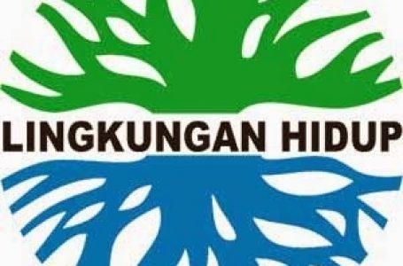 Sosialisasi Pendanaan Berbasis Lingkungan Oleh KLH
