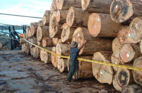 Kemendag Komitmen Membangun Industri Berbasis Lingkungan