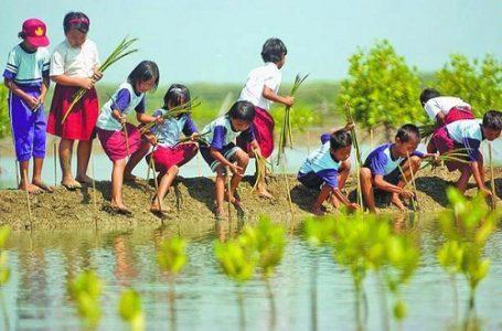 Pelajar dan Peranya Sebagai Pemecah Masalah Lingkungan Hidup