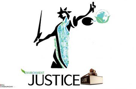 Hakimkah yang Lemah ? atau Penjahat Lingkungan yang Kebal