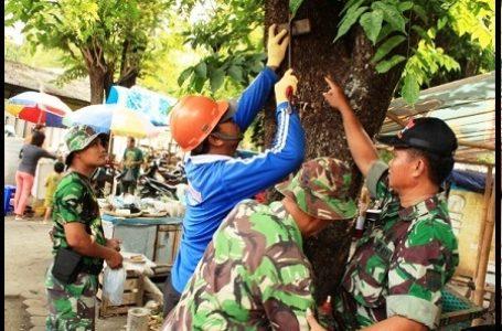 Wujud Cinta TNI Terhadap Lingkungan