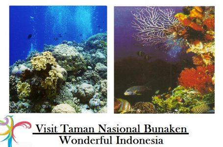 WOW ! Taman Nasional Bunaken