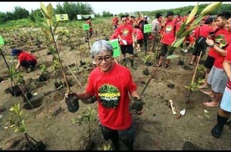 Direktur Utama Pertamina Pimpin Langsung Penanaman Mangrove di Bali