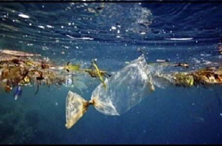 Indonesia Berkontribusi Besar Dalam Pencemaran Lautan