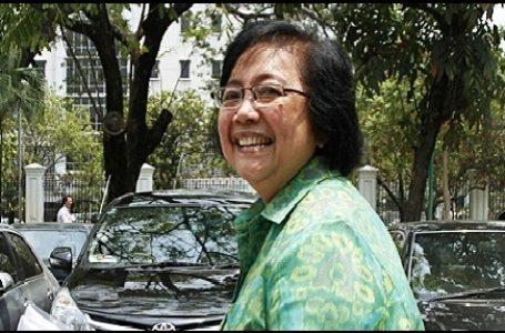 KLHK Secepatnya akan Audit PT Freeport Indonesia