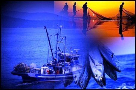 Nasib Nelayan ada Ditangan Pemerintahan Jokowi