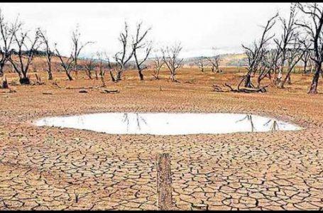 El Nino Sapa Indonesia, Produktivitas Pertaninan Terancam