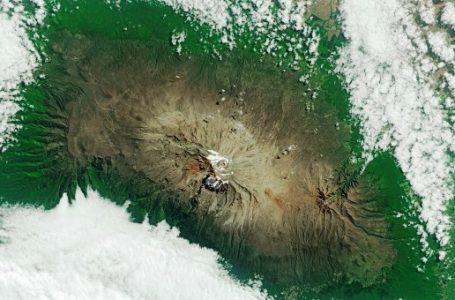 Satelit Sentinel-2A Bantu Prediksi Hasil Panen