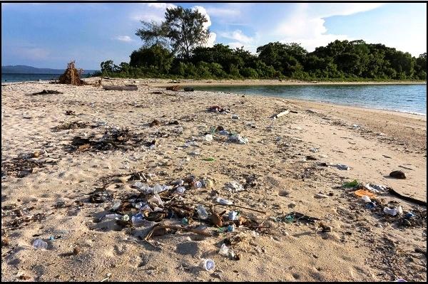 Nadine Chandrawinata Geram Melihat Lingkungan Kotor