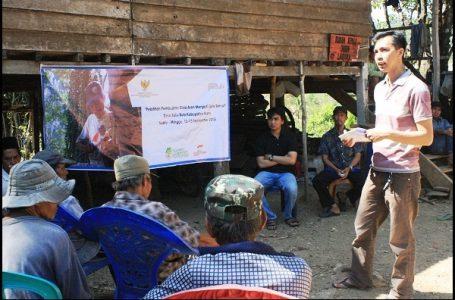SCF Gelar Pelatihan Demi Tingkatkan Ekonomi Petani Aren