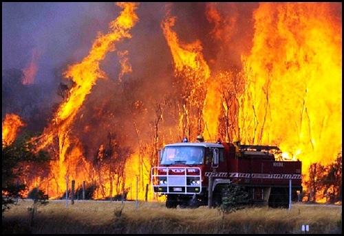 KLHK Gandeng Perusahaan Swasta Lakukan Pengawasan Kebakaran Hutan