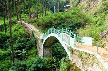 Wisata Alam dan Kenikmatan Kopi Hanya Ada di Pekalongan