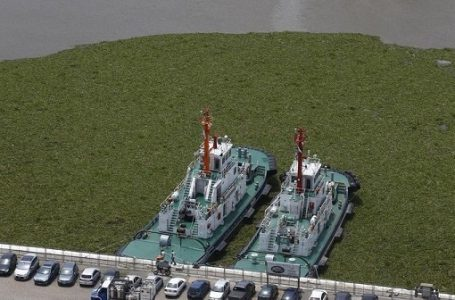 Argentina Nyatakan Darurat Banjir di Enam Provinsi