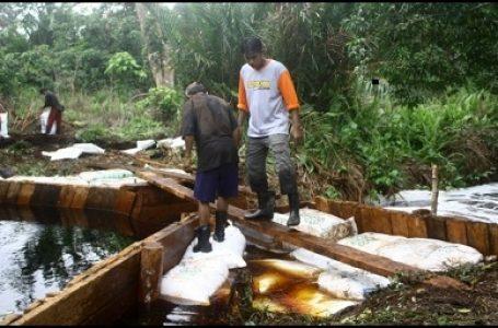 Proses pembangunan sekat kanal di Riau (Gambar: Tempo)