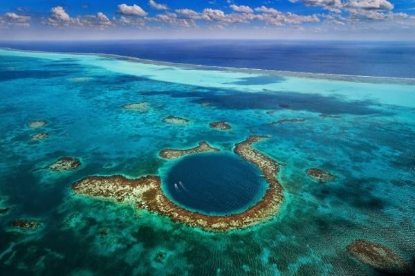 Perubahan Iklim Membunuh Terumbu Karang Terbesar Di Dunia