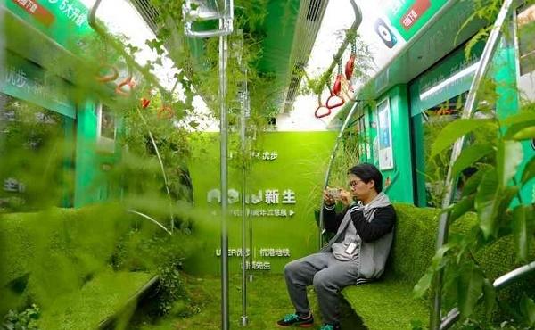 Tiongkok Sulap Kereta Bawah Tanah Jadi Hutan Mini