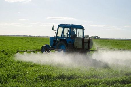 Ilustrasi pemberian pestisida pada pertanian (Gambar: Istimewa)