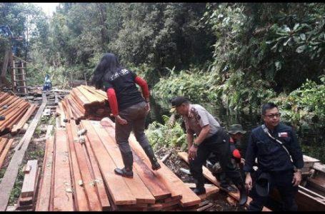 Tim Korem Garuda Putih dan Dishut Jambi Gagalkan Illegal Logging
