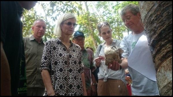 Menteri Pembangunan Denmark Apresiasi Hutan Harapan Jambi