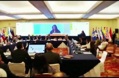 Bonn Challenge Roundtable Meeting di Sumatera Selatan, 9 Mei 2017 {Gambar: Dinas Kominfo Sumsel}