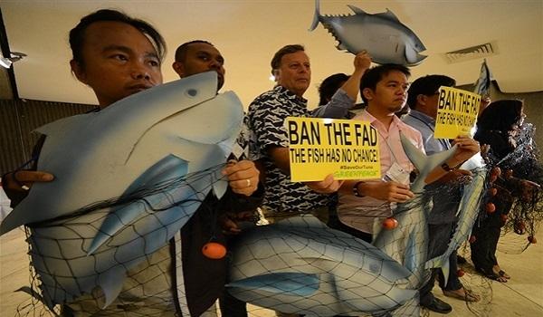Greenpeace Desak Perlindungan Tuna di WCPFC