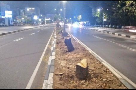 Potret pohon yang telah ditebang dijalan A. P. Pettarani, Makassar demi melancarkan pembangunan jalan tol (Gambar: Kompas TV)