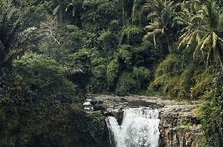 Ilustrasi koridor linier hidupan liar (Gambar: KEHATI/Indonesian Biodiversity Concervation Trust Find)