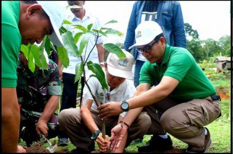 Dalam rangka memperingati Hari Menanam Pohon Indonesia (HMPI) 2018, PLN menanam 22.000 pohon di wilayah-wilayah operasional PLN (Sumber:makassar.terkini.id)