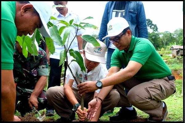 PLN Peduli Lingkungan, Tanam 1000 Pohon Desa Patanyamang