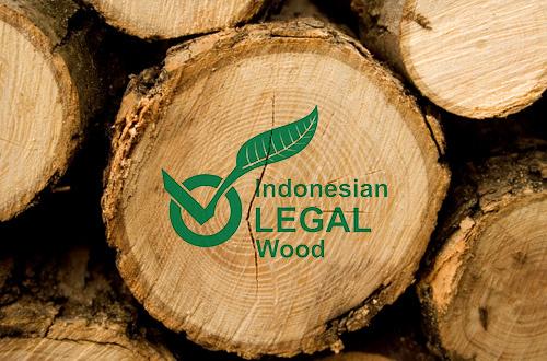 Kebijakan Permendag Dinilai Ancam Tata Kelola Hutan