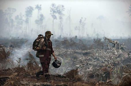 [:en]Seorang petugas pemadam kebakaran berjalan di lapangan saat asap mengepul dari pohon yang terbakar di taman nasional sebangau, kalimantan tengah (Gambar : thediplomat.com)[:]